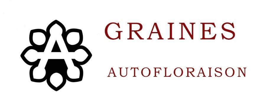 Graines Autofloraison