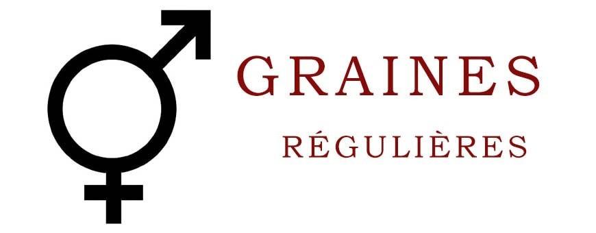 Graines Régulières